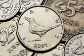 stock photo of nightingale  - Coins of Croatia - JPG