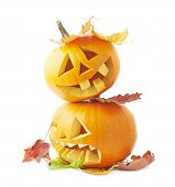 stock photo of jack o lanterns  - Two Jack - JPG