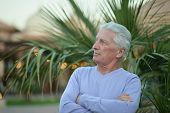 image of foliage  - Portrait of mature man over palm tree foliage with crossed hands - JPG
