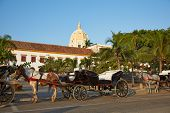 pic of carriage horse  - Horse drawn carriages used by tourists waiting alongside the fortified walls of the historic Spanish colonial city of Cartagena de Indias in Colombia - JPG