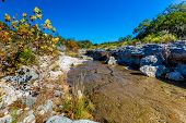 picture of crystal clear  - Fall Foliage On A Crystal Clear Creek In The Hill Country Of Texas with Deep Blue Skies.