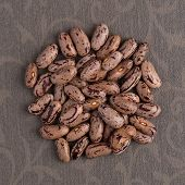 image of pinto bean  - Top view of circle of pinto beans against grey vinyl background - JPG
