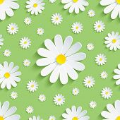 picture of floral bouquet  - Beautiful spring nature background seamless pattern green with white 3d flower chamomile - JPG