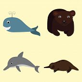 picture of platypus  - illustration with animals - JPG
