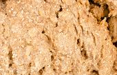 foto of crust  - Full frame take of the crust of a wholemeal bread - JPG