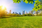 image of landscape architecture  - Central park at sunny day - JPG