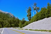 stock photo of ashes  - Roadside covered with white volcanic ash remaining after the eruption Pueue - JPG