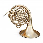 stock photo of wind instrument  - Golden french horn isolated on white background - JPG