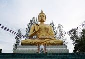 Постер, плакат: Buddha statue