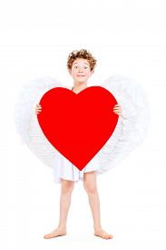 picture of cupid  - Portrait of a lovely little boy in a costume of angel - JPG