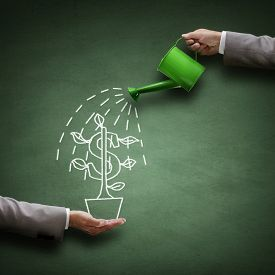 image of water-saving  - Watering can and money tree drawn on a blackboard concept for business investment - JPG