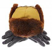 Постер, плакат: Меховая шапка и кожаные перчатки для зимней погоды