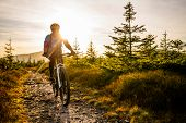 Cycling woman riding on bike in autumn mountains forest landscape. Woman cycling MTB flow trail trac poster