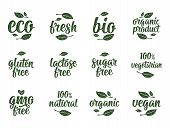 Gluten, Lactose, Sugar, Gmo Free Lettering. Sign 100 Organic Food poster