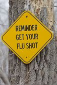 pic of flu shot  - Reminder Get Your Flu Shot Sign on a tree making a great flu shot concept - JPG