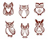 Set of cartoon owls