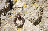 pic of nose ring  - Old iron ring in an ancient castle wall for fixing something to - JPG