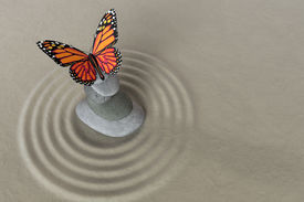 picture of garden-art  - Japanese zen garden meditation stone for concentration and relaxation with butterfly - JPG