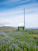Mobile phone telecommunication radio antenna tower in a summer blooming field. Concepts: communicati