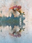 stock photo of spigot  - rusty spigot and wasps reflected in a waterhole - JPG