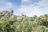 image of oman  - Image of Misfah al abreyeen in Oman - JPG