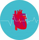foto of electrocardiogram  - Icon heart with electrocardiogram background in eps vector - JPG
