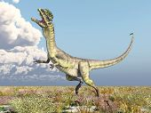 pic of dilophosaurus  - Computer generated 3D illustration with the Dinosaur Dilophosaurus - JPG