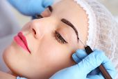 stock photo of eyebrows  - Cosmetologist applying permanent make up on eyebrows - JPG