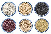 image of legume  - different kind of dry legume beans  - JPG