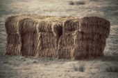 image of hay bale  - hay bale caught in black and white with a colour splash added - JPG