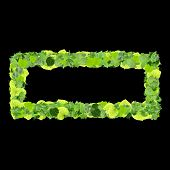 image of quadrangles  - Beautiful graphics made with green leaves on a gradient background - JPG