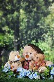 stock photo of cuddle  - Three toy bears  - JPG