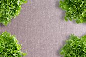 image of frilly  - Crisp fresh frilly green lettuce corner border over a neutral beige linen textile with central copyspace viewed from above - JPG