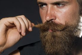 foto of moustache  - Portrait of young attractive unshaven guy with beard touching moustache with hand looking away on black studio background horizontal picture - JPG