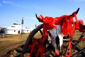 stock photo of cow skeleton  - Cattle skeleton hangging on a wooden wheel at Inner Mongolia pray for good luck - JPG