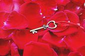 Heart Shape Key With House Keyring On Vibrant Elegant Red Petal Of Rose Background, Romantic Valenti poster