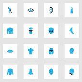 Physique Icons Colored Set With Foot, Face, Breast And Other Foot Elements. Isolated  Illustration P poster