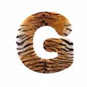 Tiger letter G - large 3d Feline fur font isolated on white background. This alphabet is perfect for poster