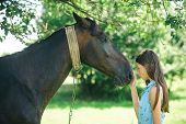 The Power Of Trust And Empathy. Young Woman With Horse On Summer Landscape. Pretty Girl At Horse Ran poster