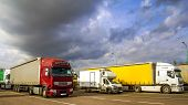 Colorful Modern Big Semi-trucks And Trailers Of Different Makes And Models Stand In Row On Flat Park poster
