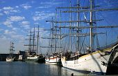 picture of flatboat  - Three-masted yachts moored in the marina Lelystad Netherlands