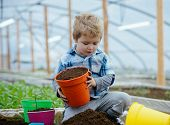 Healthy Child. Healthy Child Working In Greenhouse. Child Planting Trees In Healthy Ecology. Healthy poster