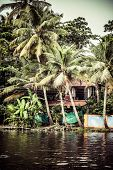 stock photo of alleppey  - House boat in backwaters near palms in Alappuzha Kerala India - JPG