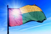 Guinea-Bissau flag waving on the wind