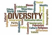 picture of racial diversity  - Diversity Word Cloud with White Background - JPG