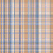 picture of tartan plaid  - Seamless plaid material pattern with blue lines on brown - JPG