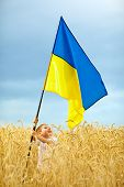 ������, ������: Glory To Ukraine Boy Waving Ukrainian Flag On Wheat Field