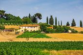 picture of manor  - rural landscape with houses standing alone in the province of Tuscany in Italy - JPG