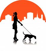 foto of poodle skirt  - A woman with a dog on the background of the cityscape - JPG
