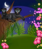 picture of panther  - Illustration of two black panthers on tree in jungle at night - JPG
